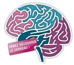 logo-semaine du cerveau.jpg